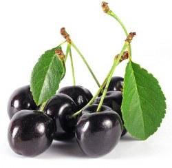 Black Cherry 15ml 0mg
