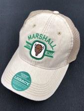 Dashboard Trucker Hat- Stone