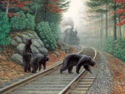 Bear Tracks 500pc