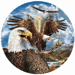 13 eagles 1000pc