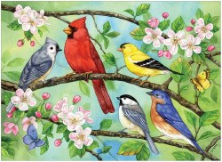 Blooming Birds  350pc