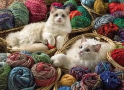 Ragdoll Cats 1000pc