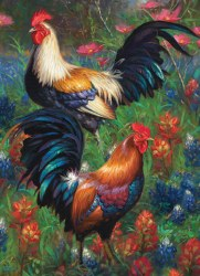 Roosters 1000pc