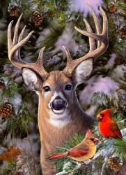 One Deer Two Cardinals 500pc