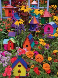 Birdhouses 275pc
