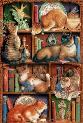 Feline Bookcase 2000pc