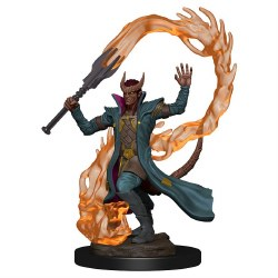 D&D Tiefling Male Sorcerer