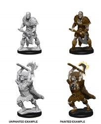 D&D Male Goliath Barbarian W10