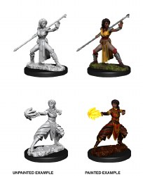 D&D Female Half-Elf Monk W10