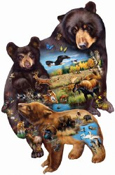 Bear Family Adventure