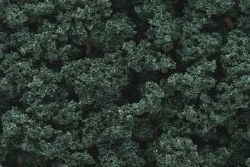 Bushes Clump Foliage Dark Green