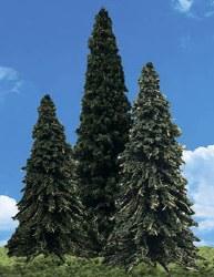 """4  Forever Green Trees 3.5 - 5.5"""""""