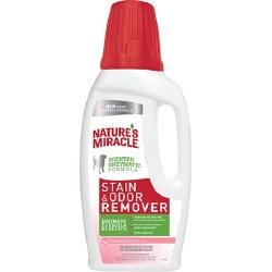 Grapefruit Zest Dog Stain & Odor Remover Refill 32oz