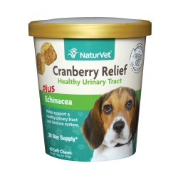Cranberry Relief Plus Echinacea Dog Soft Chews 60ct