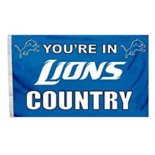 Detroit Lions Flag with Grommetts - You're in Lions Country