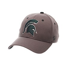 Michigan State University ZH Standard (Low) (SPARTAN) Gray  ZClassic Stretch Fit Hat
