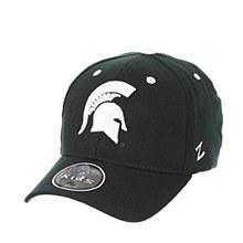 Michigan State University Youth ZH hat