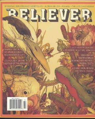 Believer By Mcsweeney's
