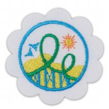 Daisy Roller Coaster Design Challenge Badge