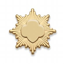 Gold Award Pin - Goldtone