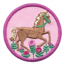 Junior Horseback Riding Badge