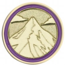 Junior Journey Summit Award Pin