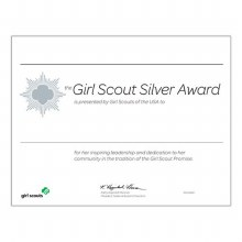 Silver Award Certificate- Single Certificate