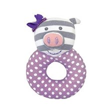 Penny Pig Rattle