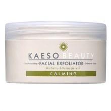 Kaeso Facial Exfoliator Calming Mulberry & Pomegranate 245ml