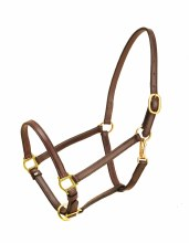 "3/4"" Tory Leather Horse Halter"
