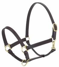 Brown Leather Table Halter Horse Size