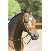 Pessoa Raised Fancy Stiched Wide Nose Bridle