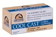 Cool Cast