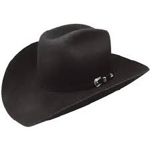 Resistol Slinger 3X Wool Hat