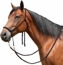 Mustang Bitless Bridle w/ Reins