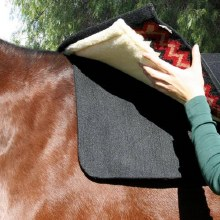 Saddle Pad Liner
