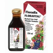 Floradix Floravital Liquid Iron and Vitamin Formula 250ml