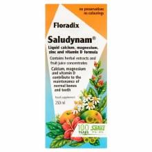 Floradix Saludynam Liquid Multivitamin & Mineral Formula 250ml