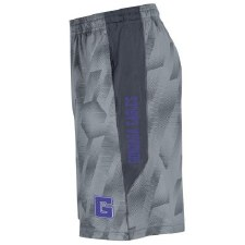 Shorts UA Raid Novelty G XL