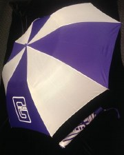 "Umbrella, Folding 48"""