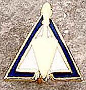 Council Lapel Pin