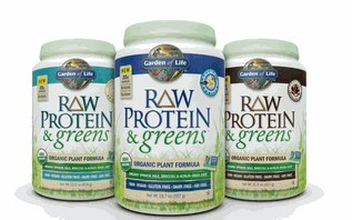 Garden of Life Lightly Sweetened Protein&Greens, 1.1 oz.