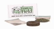 From the Field Grow Your Own Catnip