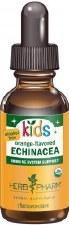 Herb Pharm Children's Alcohol Free Orange-flavored Echinacea Glycerite, 1oz.