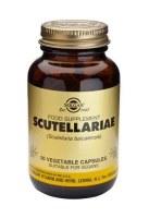 Solgar Scutellariae Vegetable Capsule 50
