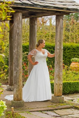 Beautiful Brides BB17517