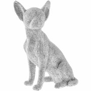 Chihuahua Sitting