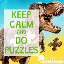 Assorted 100 Piece Puzzle
