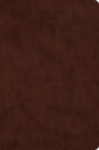 ESV Compact Bible - Brown Trutone