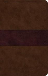 ESV Thinline Bible - Brown Imitation Leather